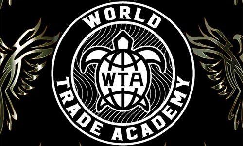中神あきらのタートルズアカデミーはワールドトレードアカデミーじゃなかった!